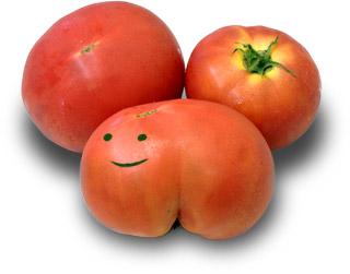 規格外トマト